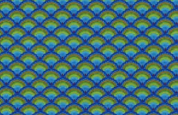 Peacock coord.jpg