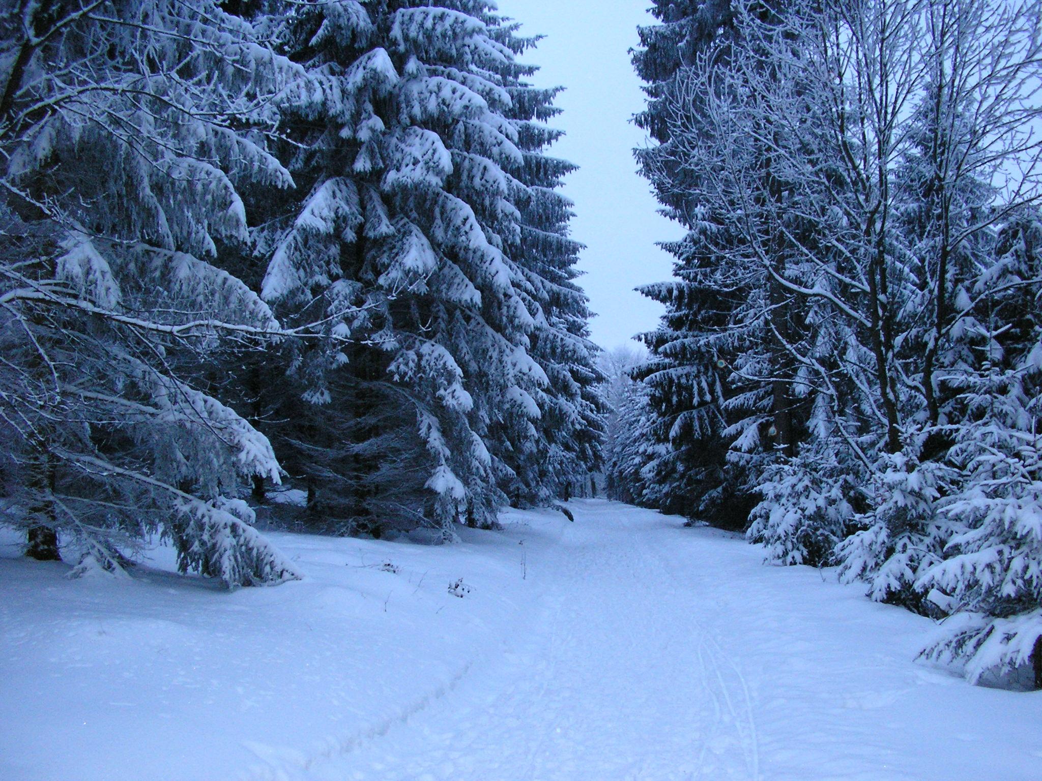 winter vt.JPG