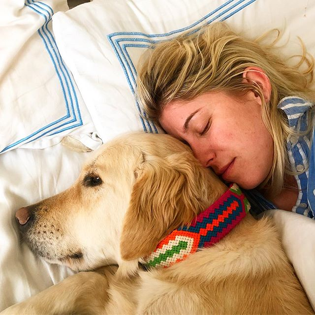 Lazy dayz... #buenaonda #daydreaming #golden @goldcamp #puppy @goldenretrievers #dogcollar