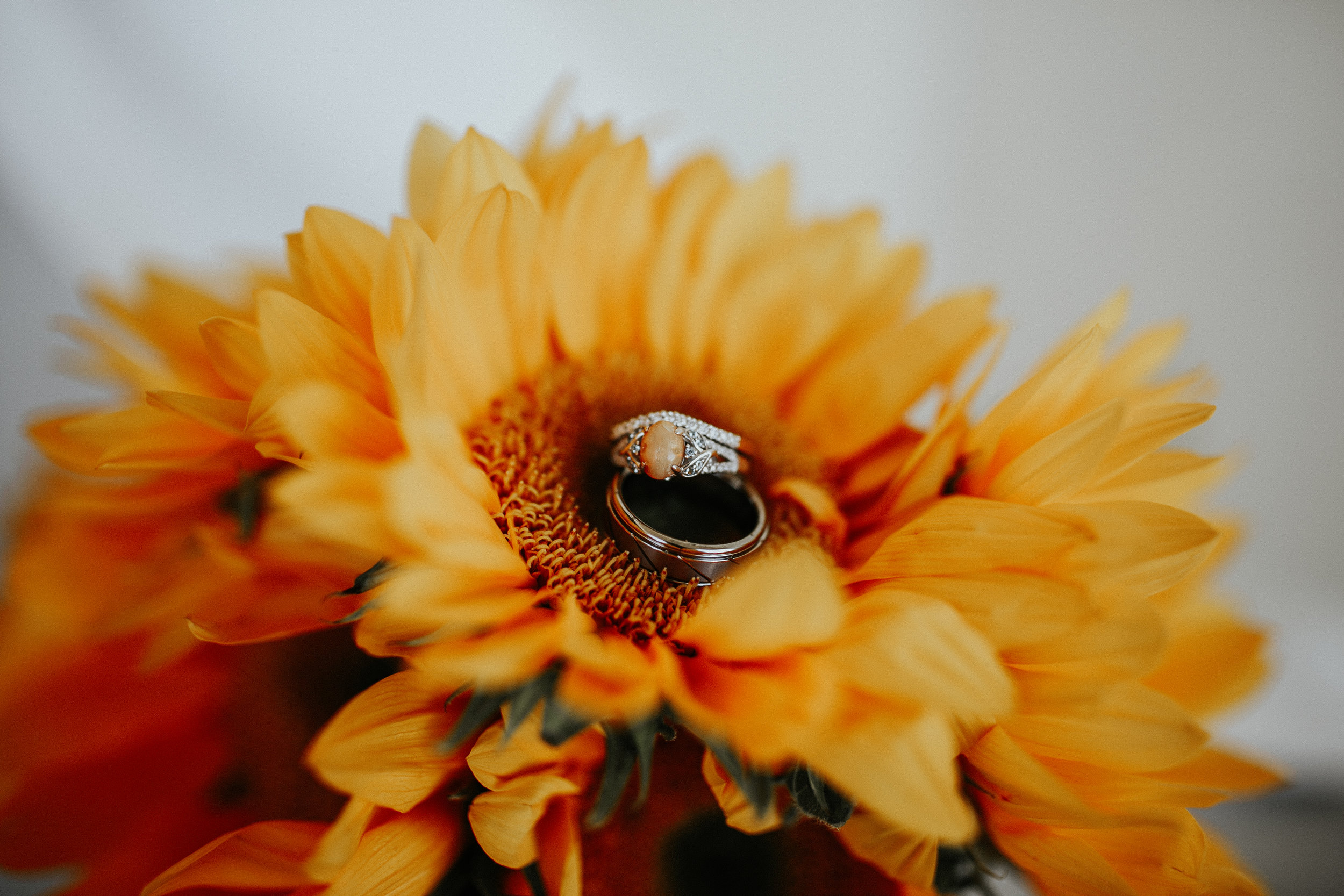 adventure-wedding-photographer-gracetphotography-8.jpg