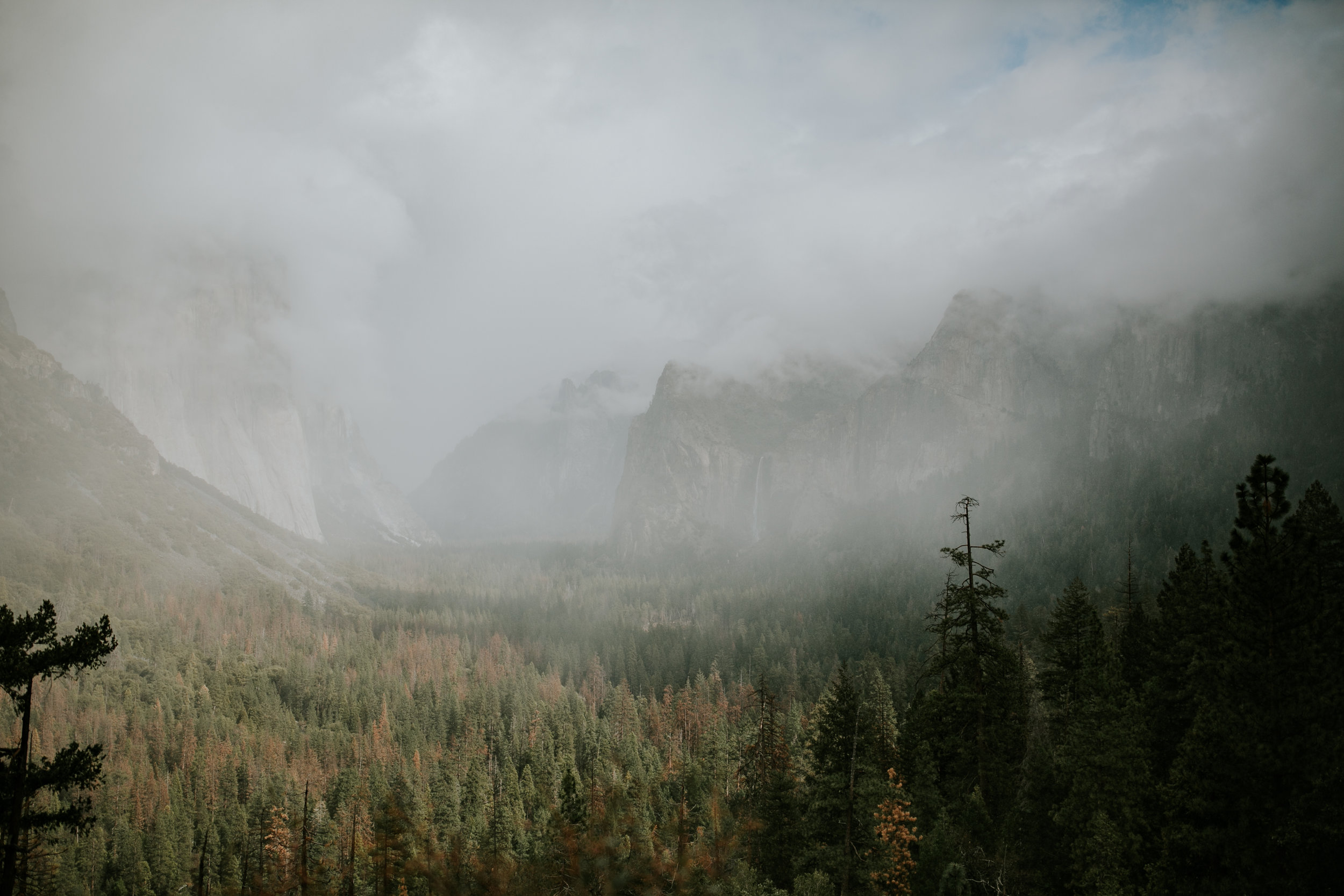 adventure-california-yosemite-photographer-grace-t-photography-2.jpg