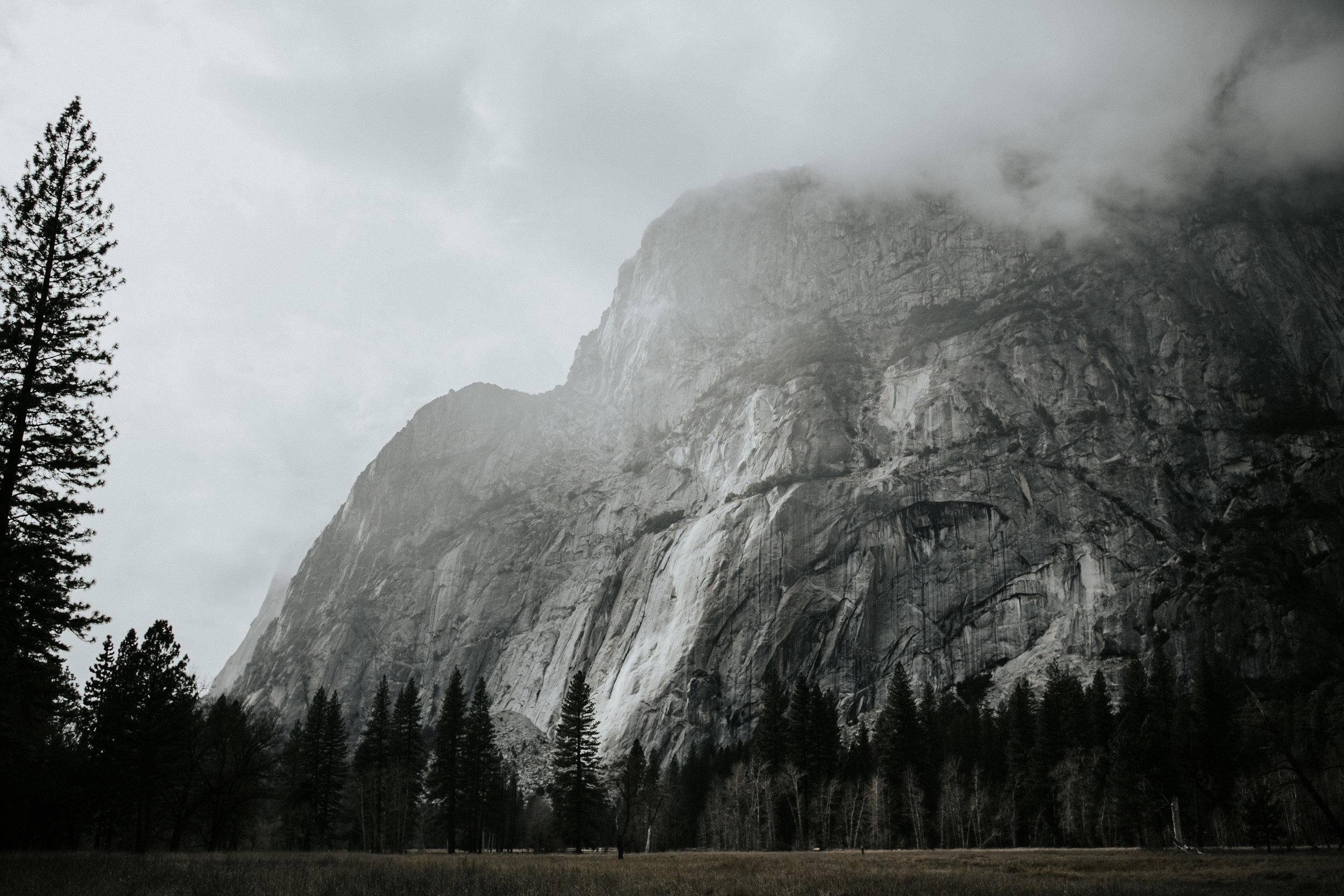 adventure-california-yosemite-photographer-grace-t-photography-25.jpg