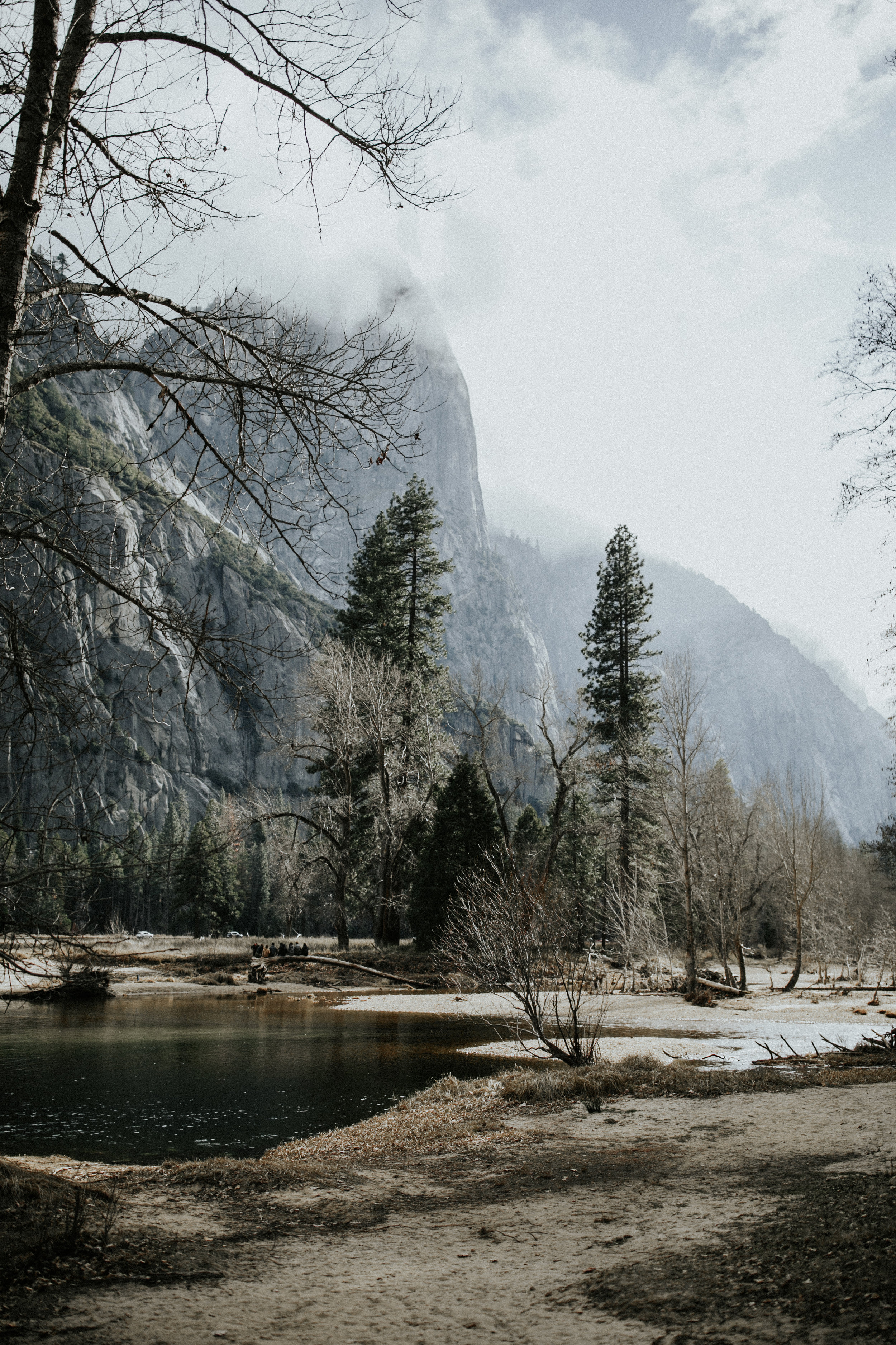 adventure-california-yosemite-photographer-grace-t-photography-35.jpg
