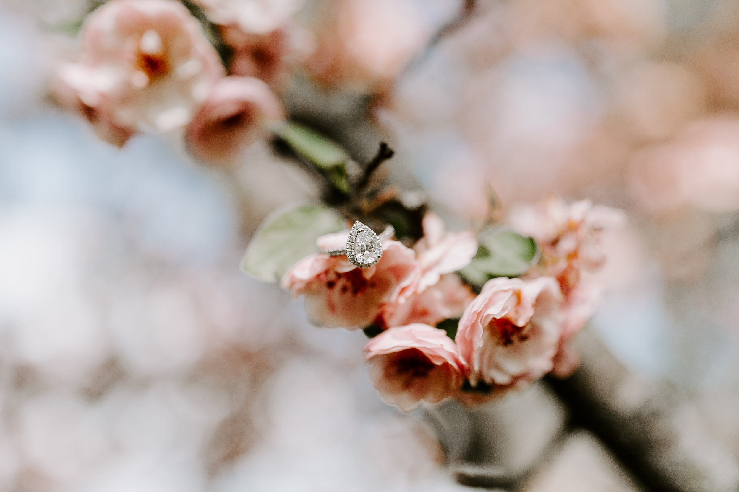 gracetphotography-wedding-photographer-adventure-bride-engagement-midwest-16.jpg