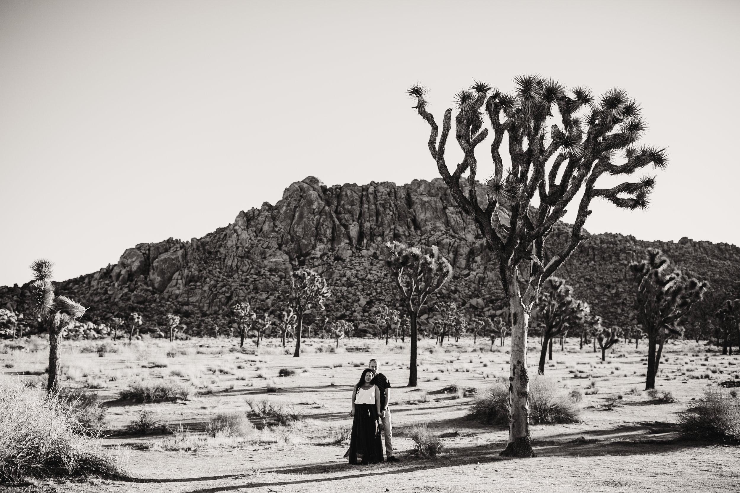 joshua-tree-elopement-photographer-california-wedding-photographer-67.jpg