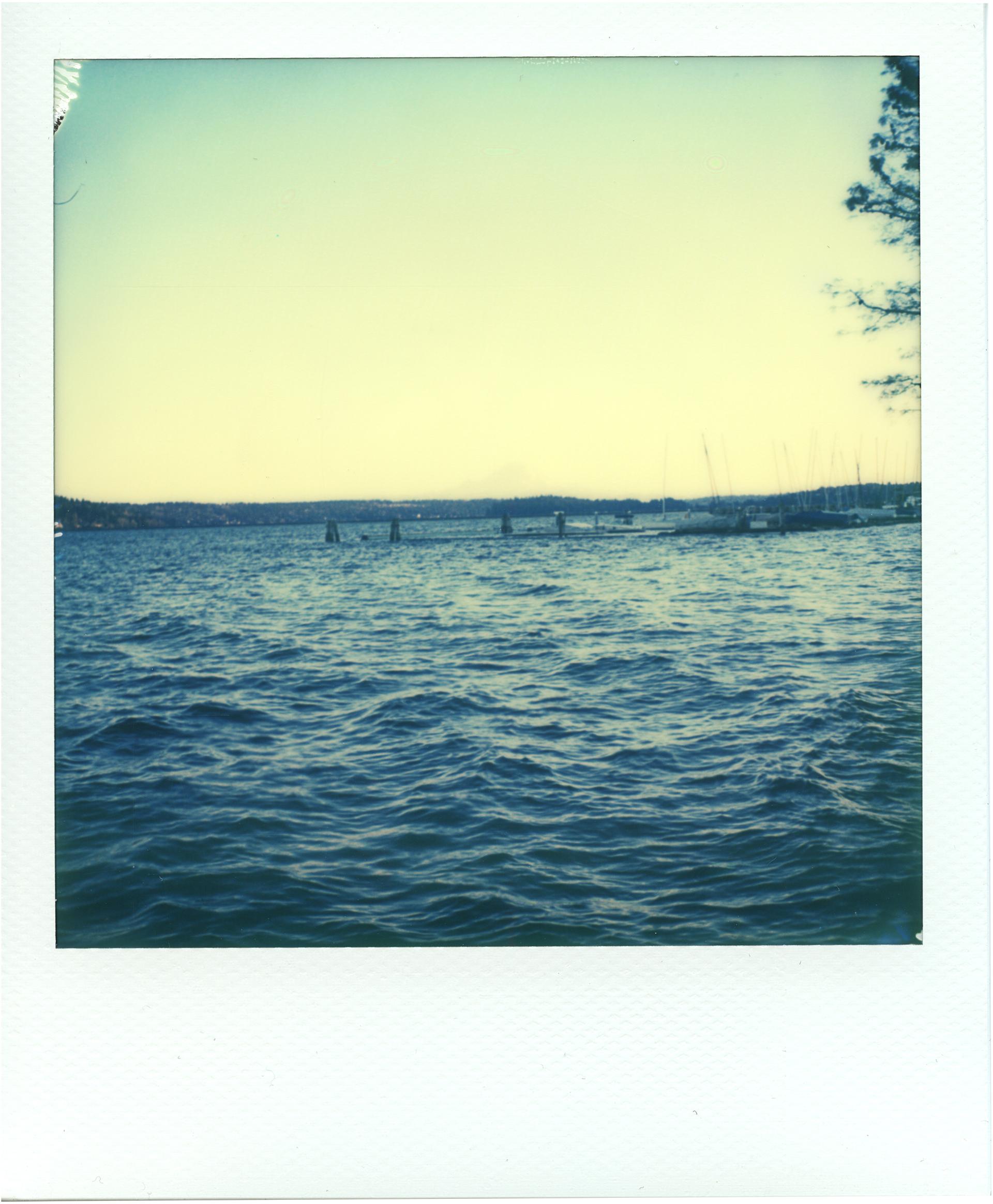 LakeWashington1.jpg
