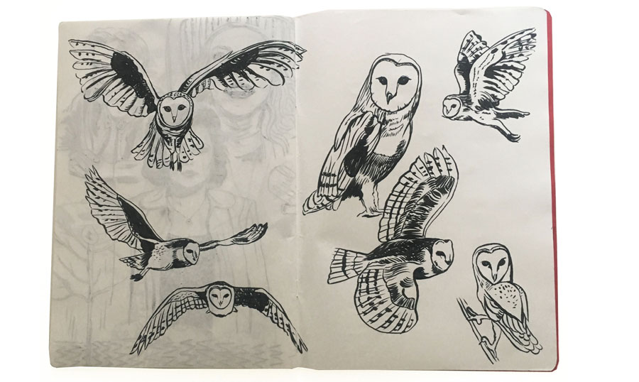 ckeegan_sketchbookpages_owl.jpg