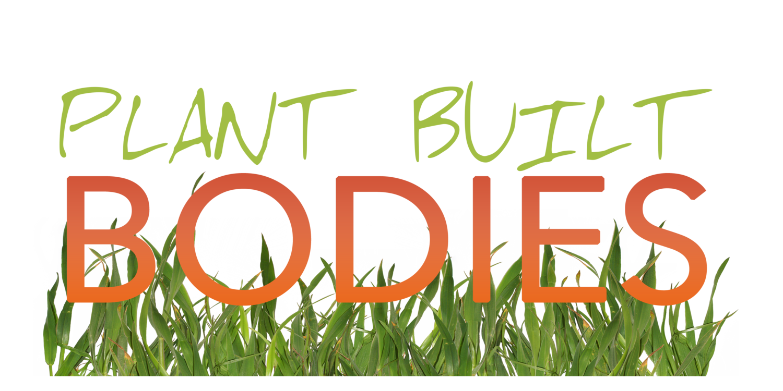 PBB+-+Logo+No+Background+-+Green.png