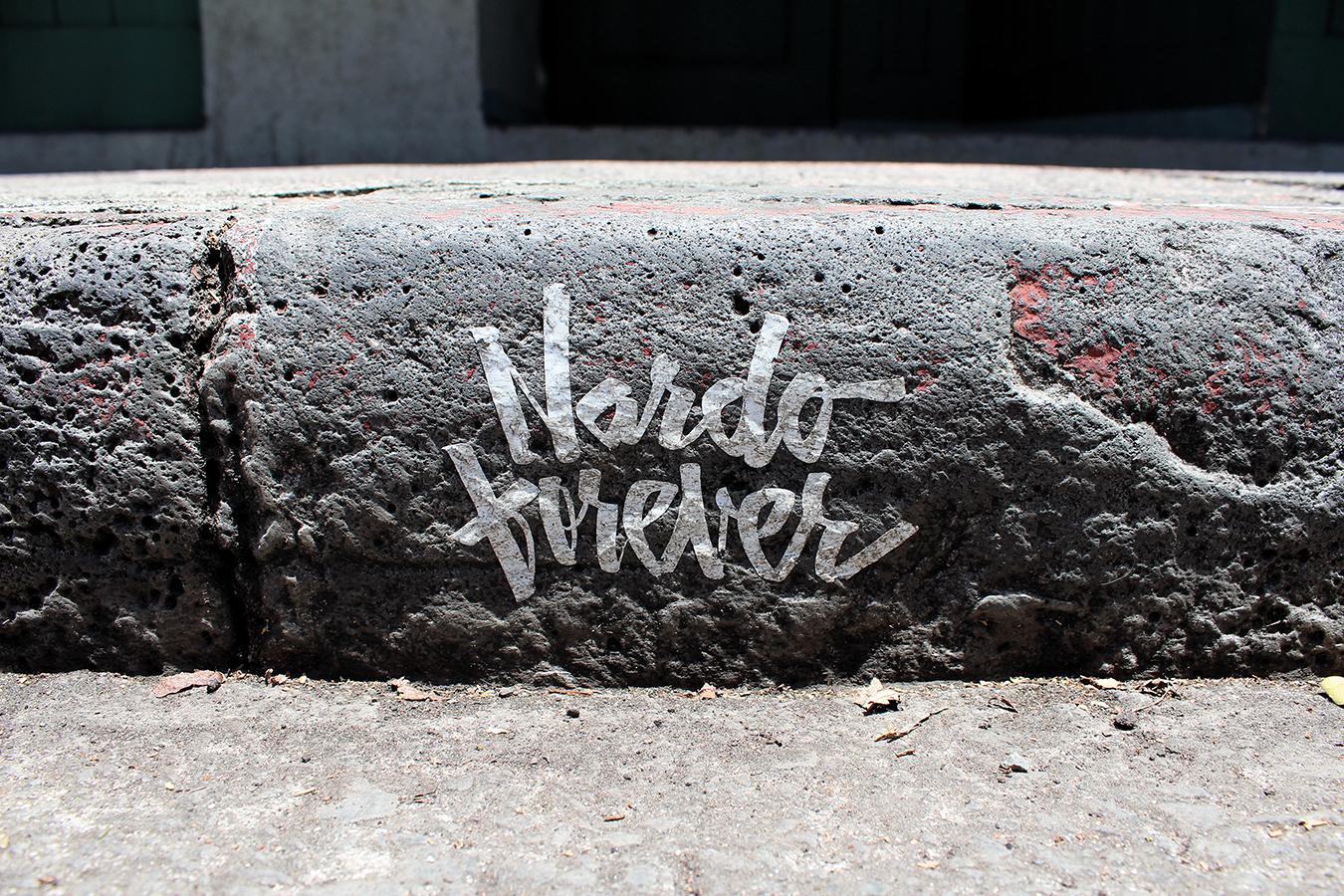 Nardo Forever Curb1.jpg