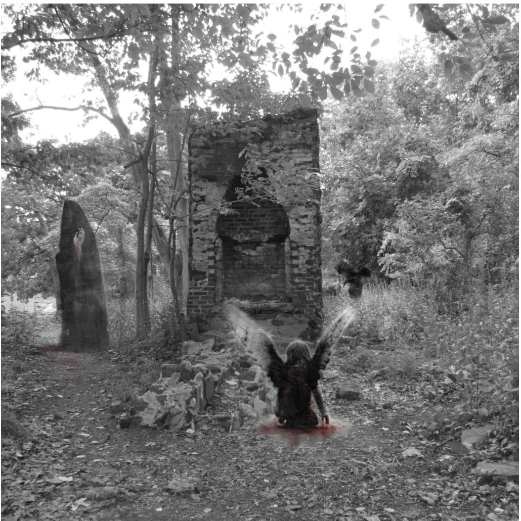 Come Join the Murder - 2k15 Rye Marshlands ConservancyFoto ShowRye, NY October 2k15