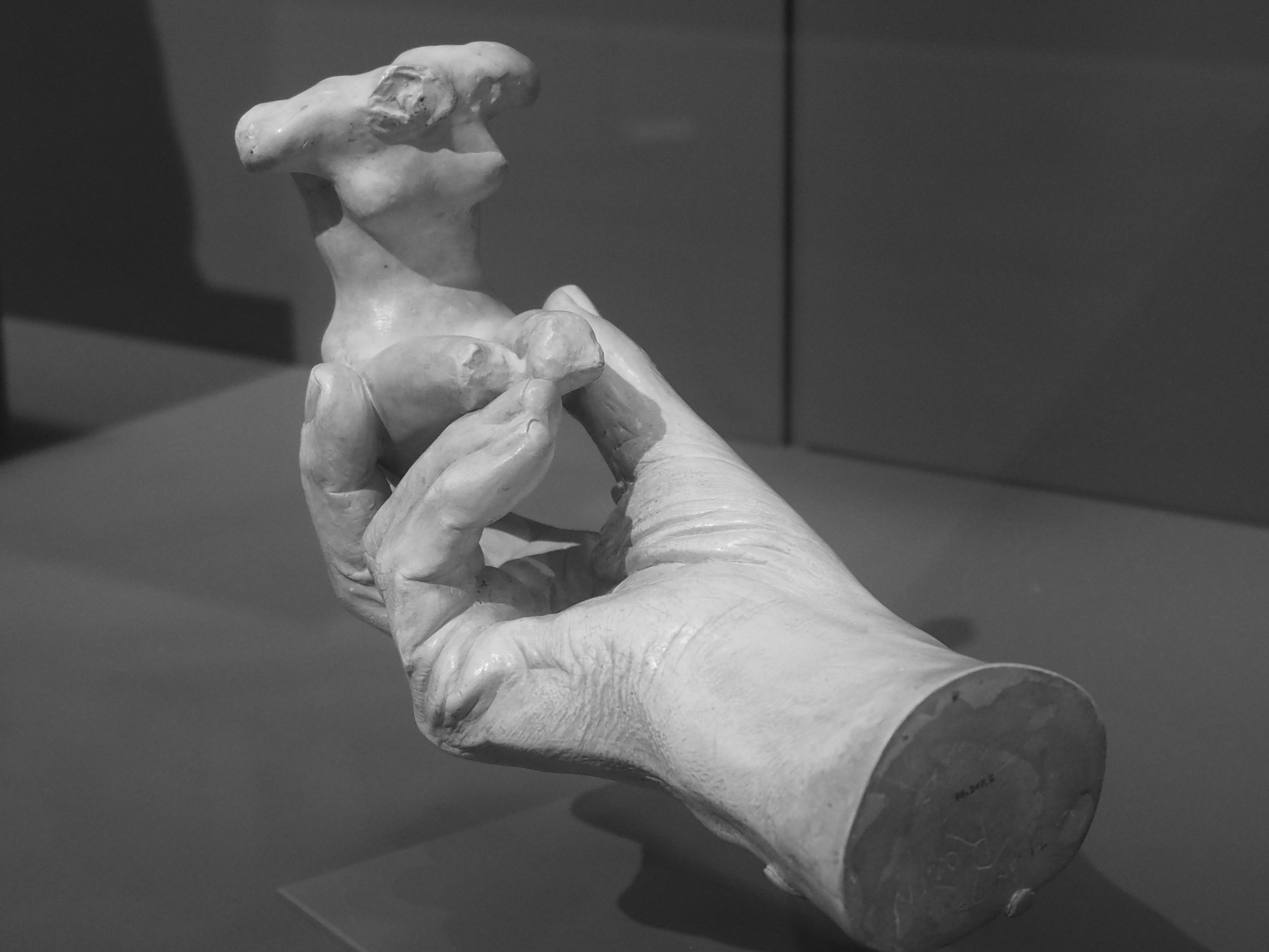 Hand & Torso