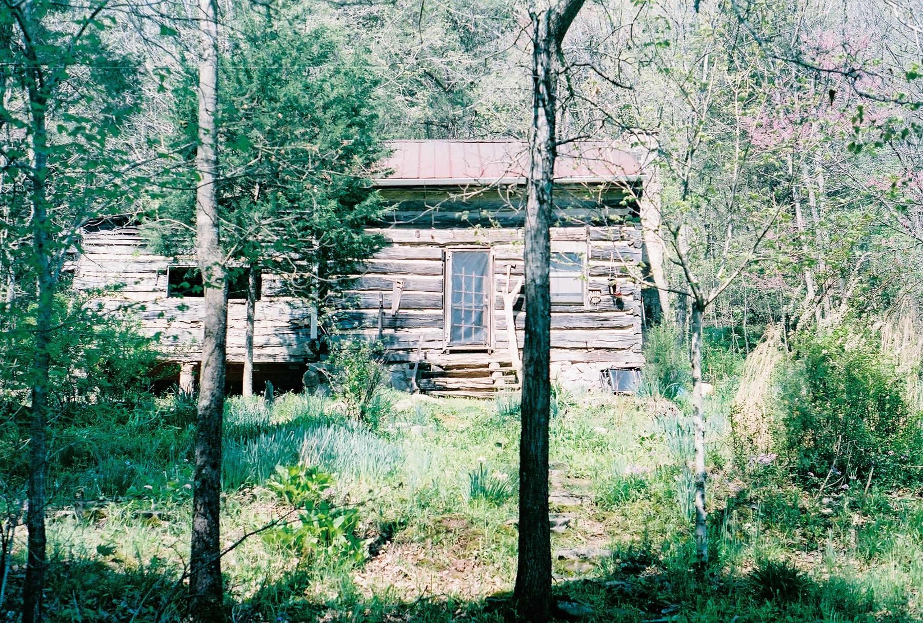David's Cabin.jpg