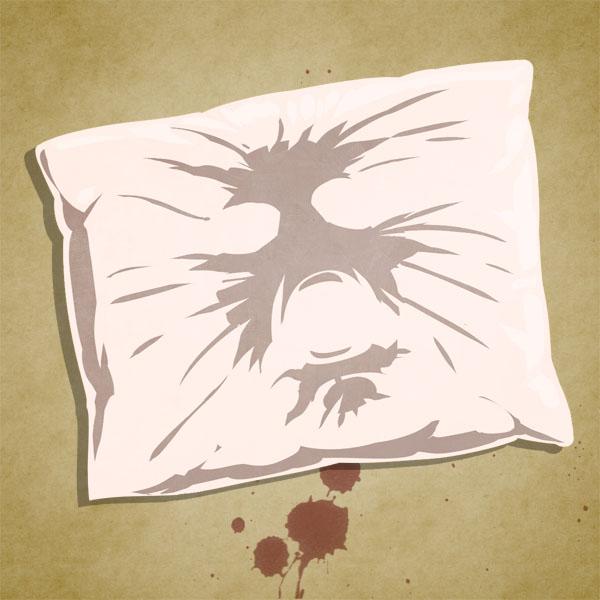 A Fluffy Pillow