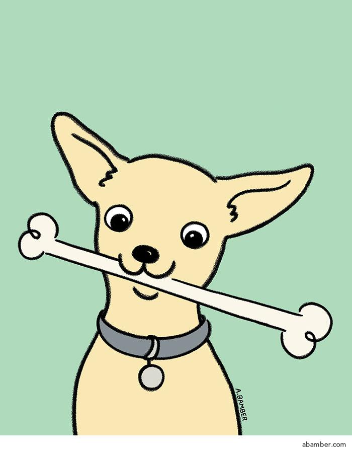 ABamber_Illustration_chihuahua_dog.jpg