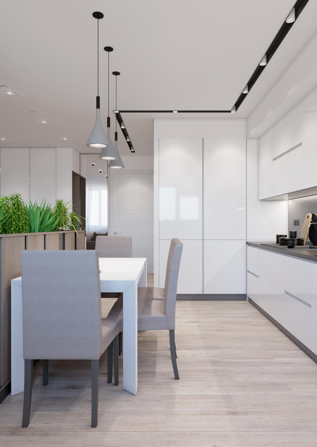 Кухня-гостиная ракурс 3.jpg