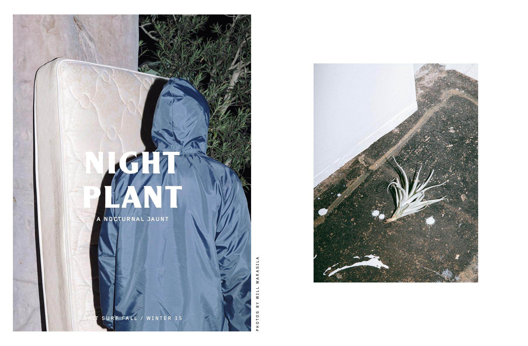 Nabil Samadani_Night Plant_ - SALT SURF.jpg