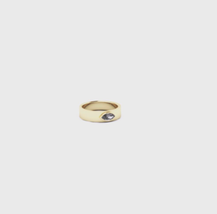 black diamond ring - Jonne Amaya.png