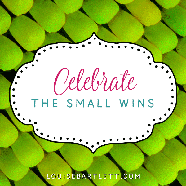 Celebrate the small wins
