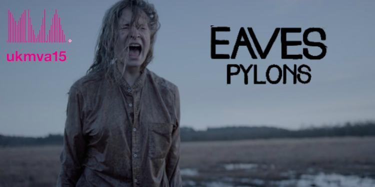 eaves site.jpg