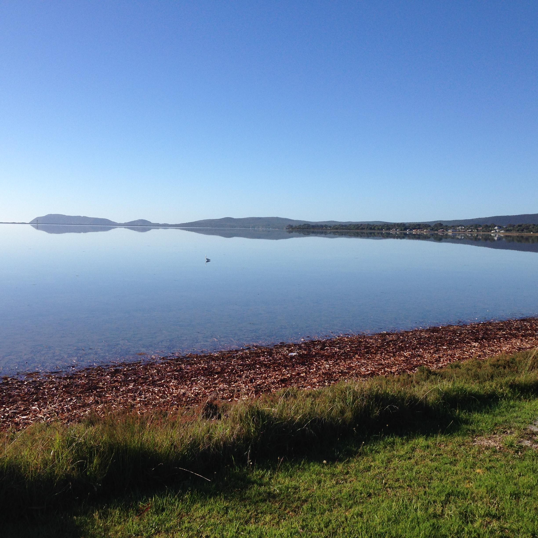 Albany Views