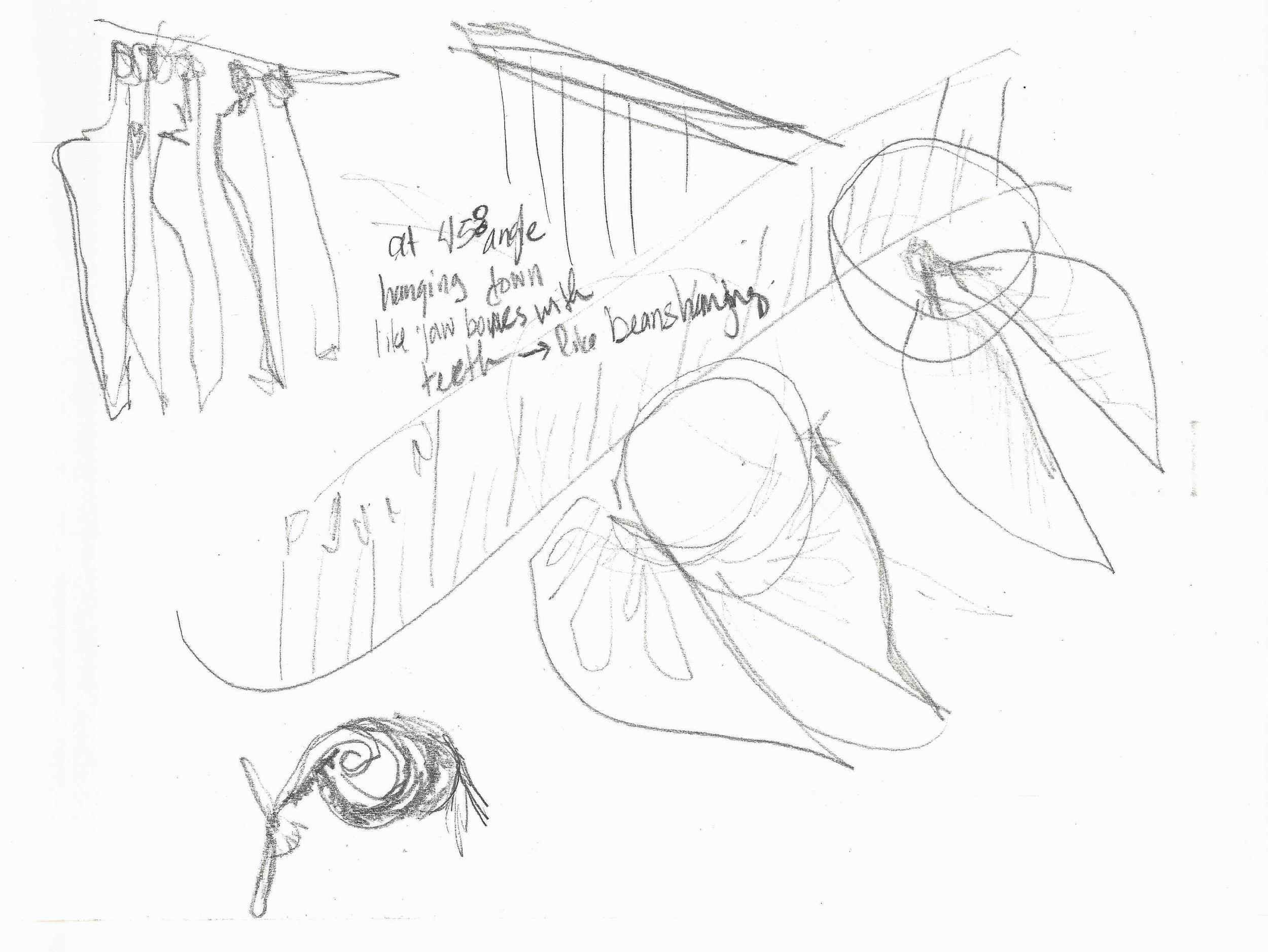 Ikebana sketch0006.jpg