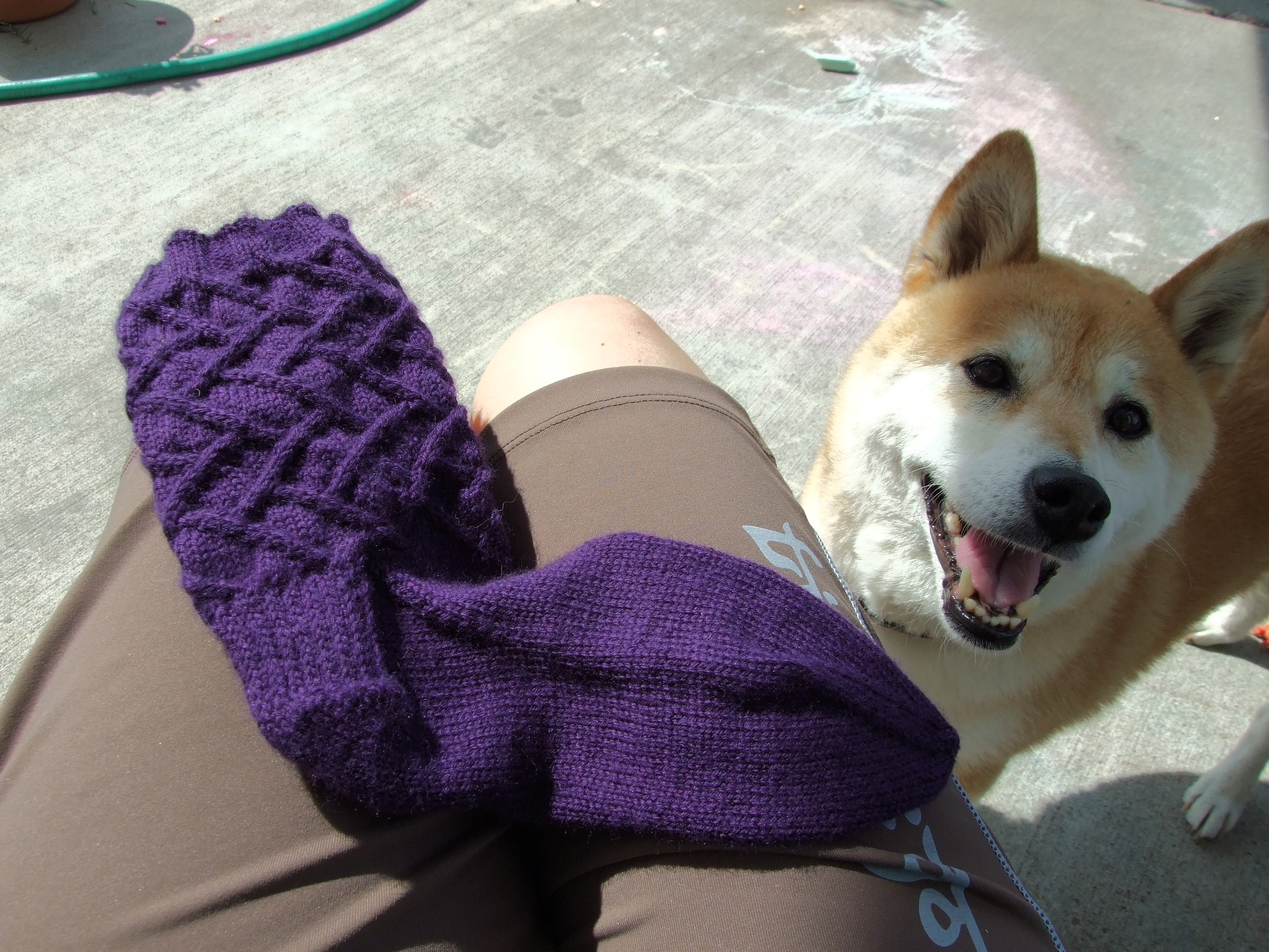 Pattern: Sam by Cookie A Yarn: Cascade Heritage Sock