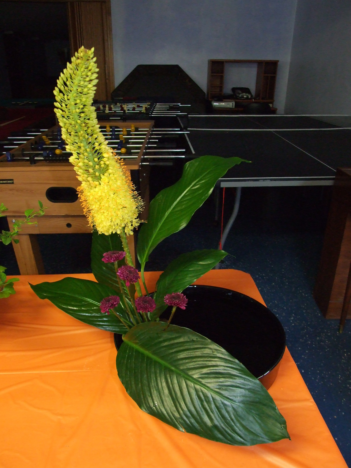 My ikebana entry, yellow flower, button mums, and peace lily leaves.