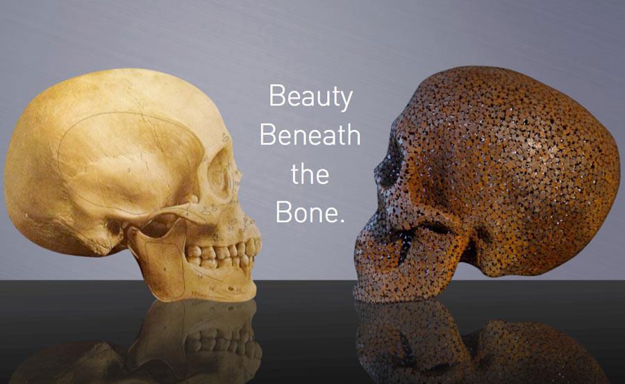 Beauty-Beneath-The-Bone