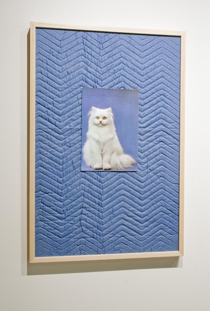 "Nova Rico, 24"" x 36,"" found objects, 2014. (available)"