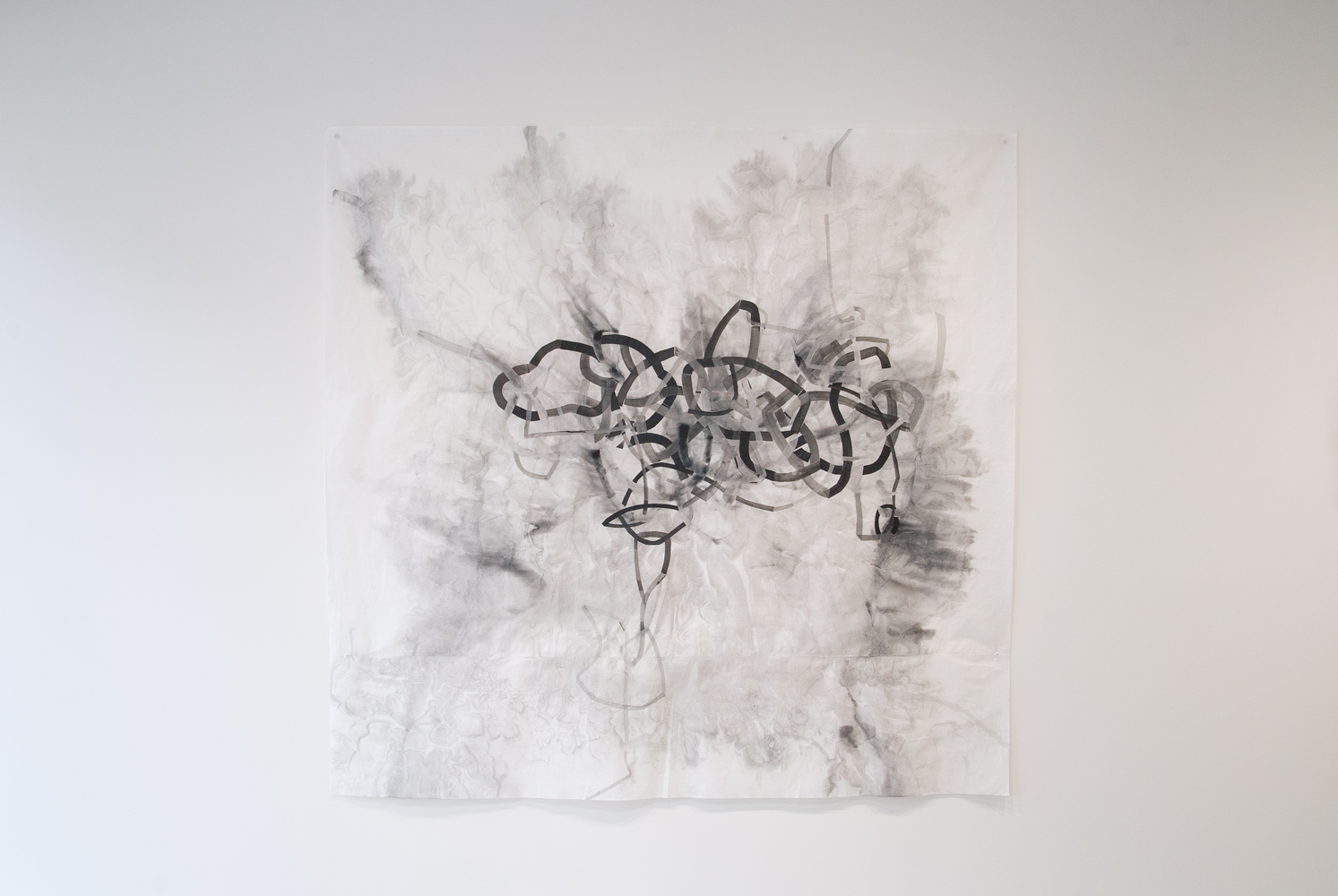 Tangled 1,  6'x5', Ink on paper