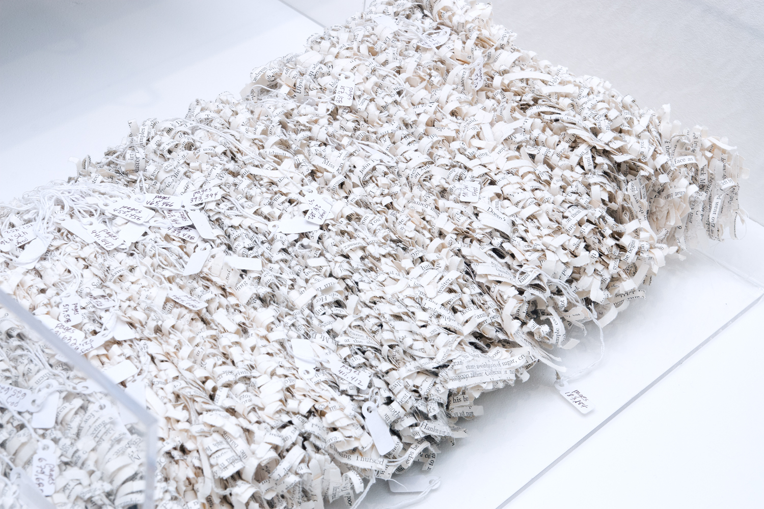 Ulysses , 2010.Shredded pages of book, thread, tags, book cover, 8 x 17 x 24 inches.Book: Pollan, Michael. The Botany of Desire