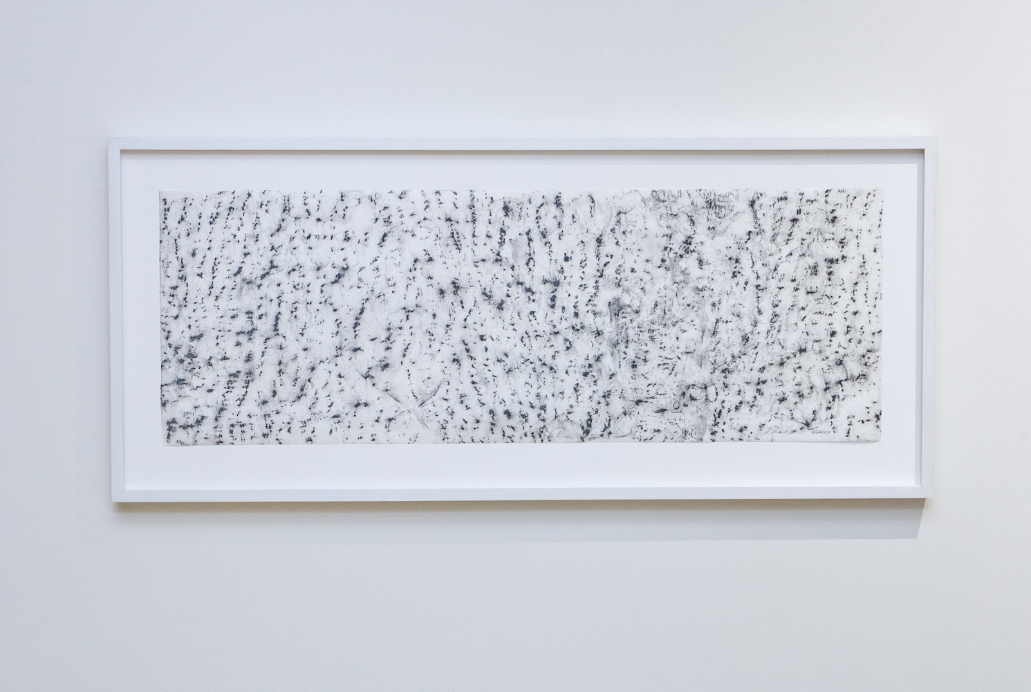 White Ash , 2015.Graphite on Japanese paper,33 ½ x 11 ¾ inches.Book: Whitehead, Alfred North  Adventures of Ideas