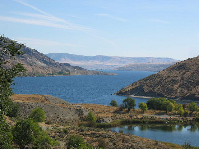 Franklin Roosevelt Lake (Lake Roosevelt)    This Columbia River impoundment stretches more than 150 miles from Grand Coulee Dam into Canada and is managed cooperatively between WDFW, the Colville Confederated Tribe of Indians and The Spokane Tribe of Indians. Fishing season is open year-round, except for sturgeon, which are closed to fishing all year. Rainbow Trout, Kokanee, Walleye and Smallmouth Bass are the star attractions. Cooperative net-pen rearing projects at numerous locations provide the Rainbow Trout fishery. The cooperative net-pen project plants approximately 750,000 triploid catchable Rainbow Trout annually into Lake Roosevelt. Check the latest regulations pamphlet for special trout and Kokanee rules and redefined San Poil River boundaries. Other fish available to catch are Burbot, Lake Whitefish, and Yellow Perch. Bow-and-arrow fishing for Common Carp is prohibited.  Lake Roosevelt is one of the waters on which we conduct our annual Fall Walleye Index Netting (FWIN) surveys.  The FWIN methodology was developed in Ontario, Canada as a means of monitoring a wide variety of biological parameters in Walleye populations in a standardized fashion using gill nets.  Our latest report can be found here.  http://wdfw.wa.gov/publications/01717/   The National Park Service operates 35 recreation areas along the 660 miles of shoreline. Maps are available at the dam's visitor center and WDFW Spokane office.  Water level fluctuations can be a problem for boat launching. For current water level information, call (800) 824-4916. The Washington Department of Health (DOH) has issued this fish consumption advisory for Lake Roosevelt due to mercury contamination: pregnant women, women of childbearing age, and children under six years of age should eat no more than two meals of walleye (8-ounce portion) a month. For more information, check the DOH    More Information can be found at    http://wdfw.wa.gov/