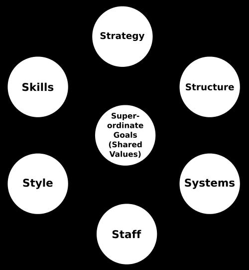 McKinsey 7S Management Model