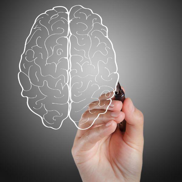Brain marketing