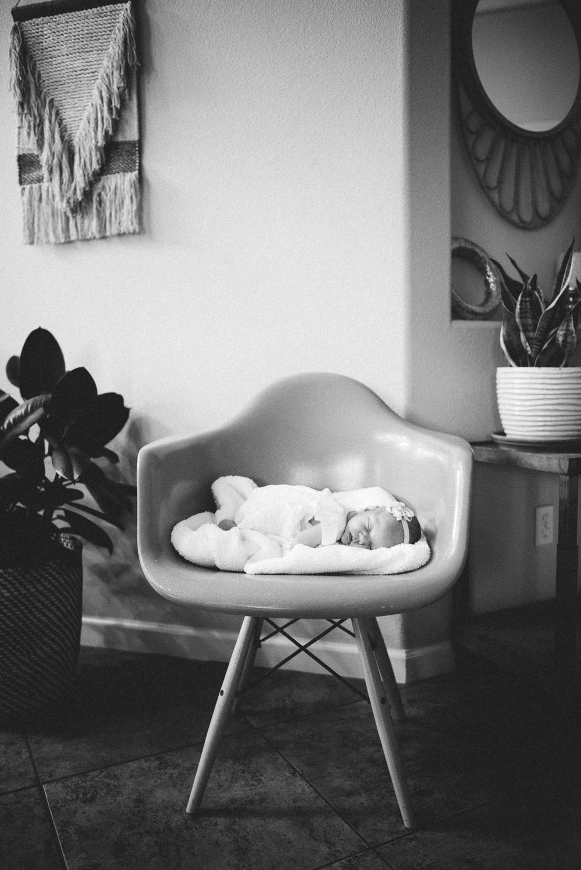 vanderhoek_family_photography-8408.jpg