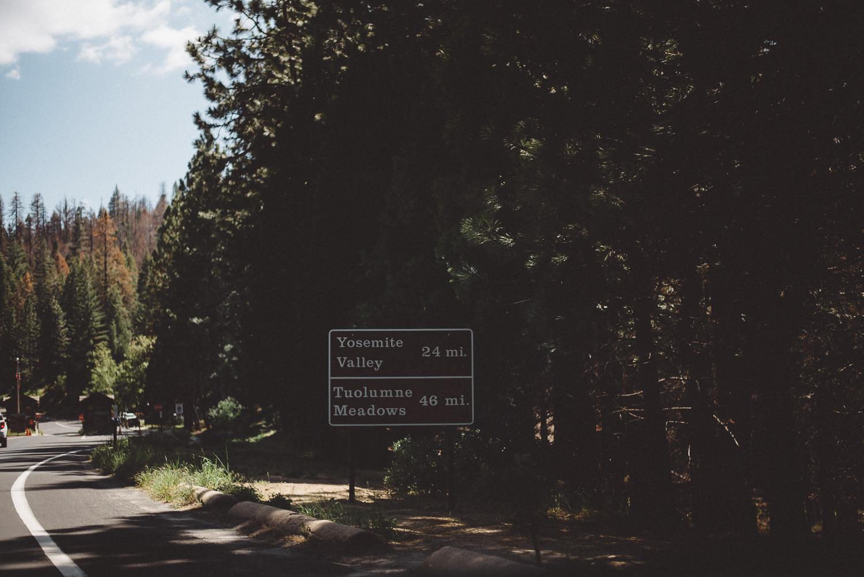 Inna_Alex_Yosemite_Elopement-3911.jpg