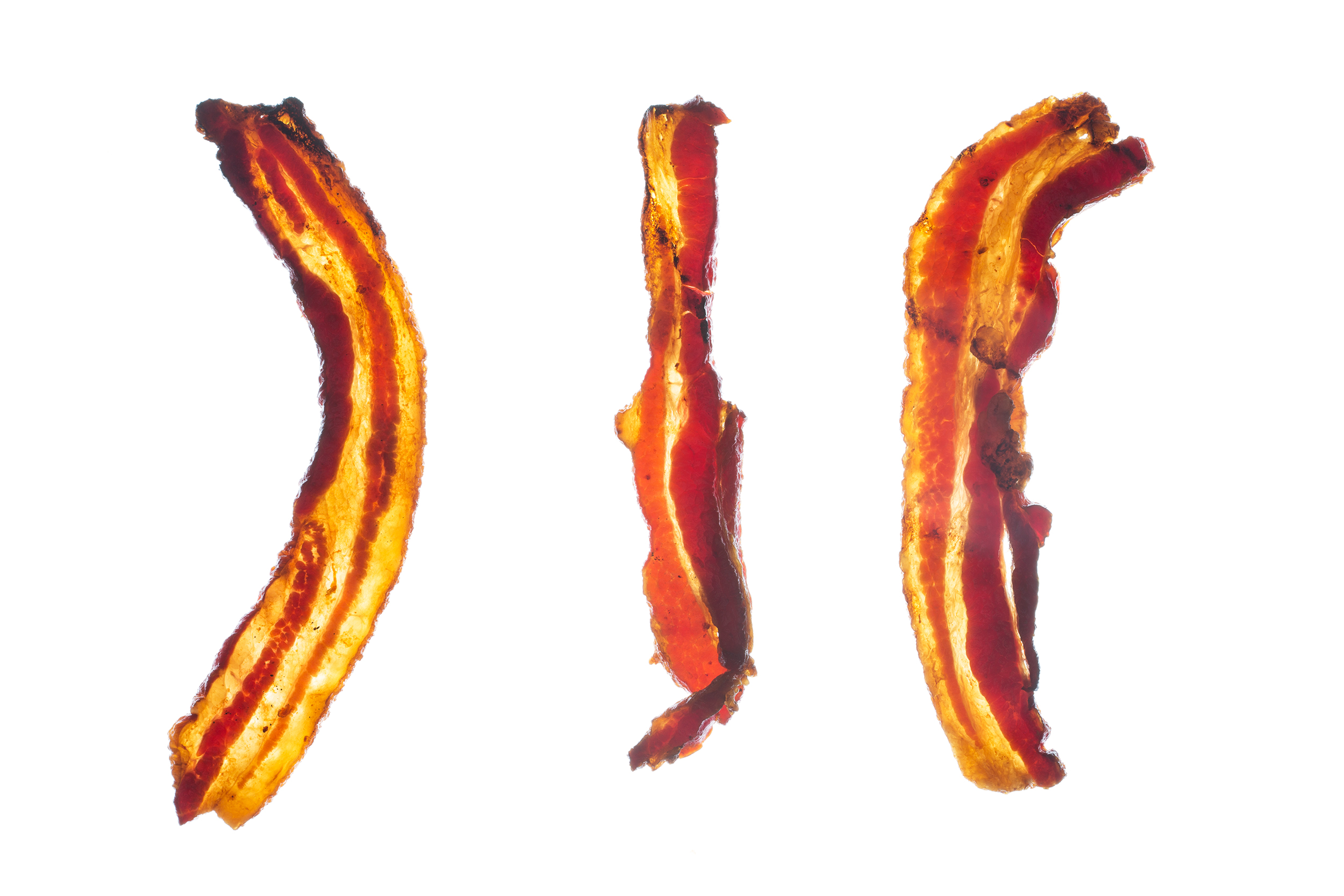 Translucent Bacon
