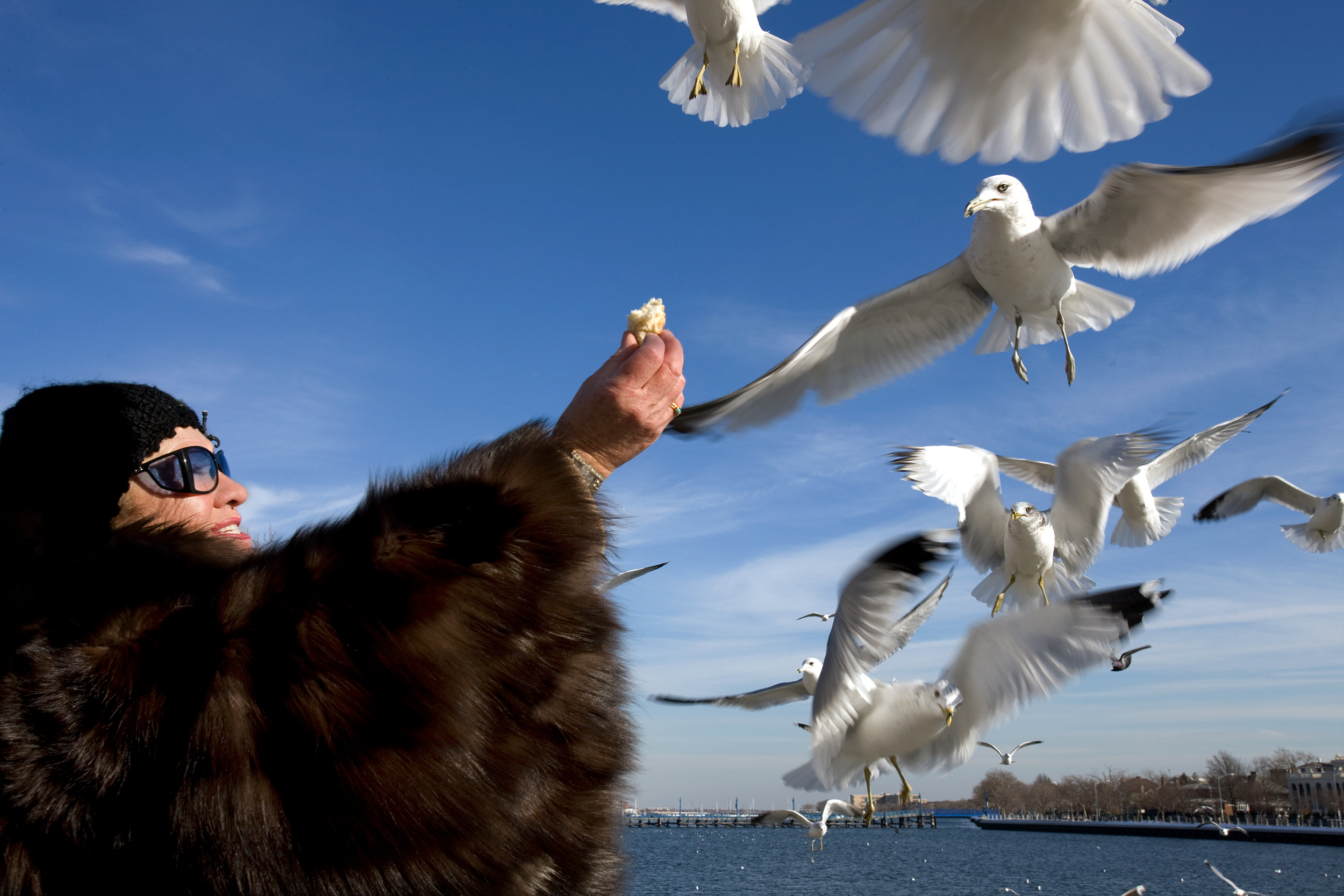 Manhattan Beach Woman Feeding Birds