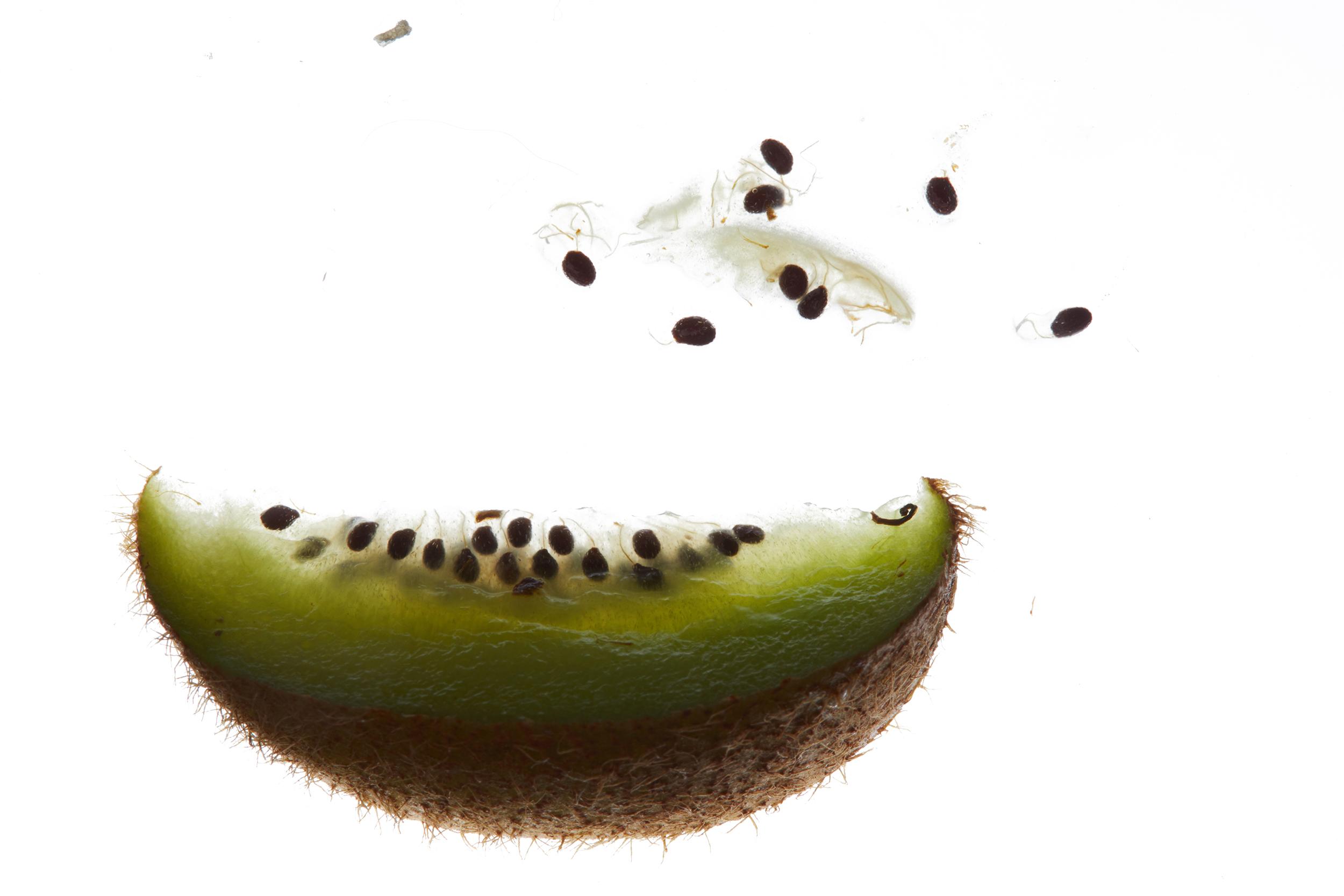 Translucent Kiwi Wedge