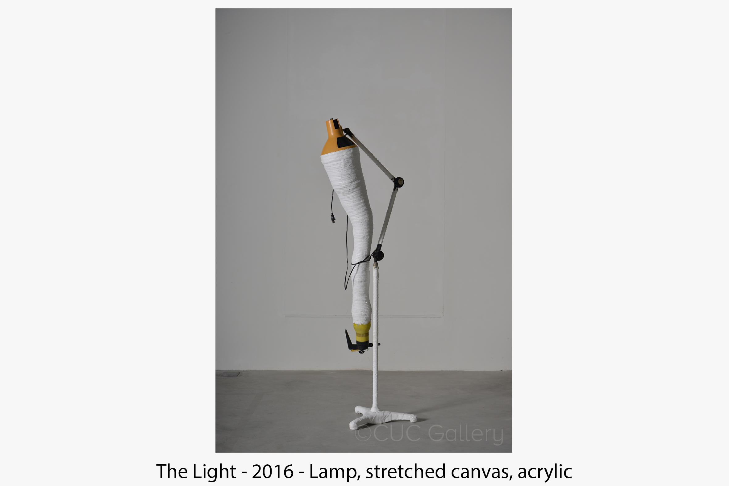 The+Light+2016 (1).jpg
