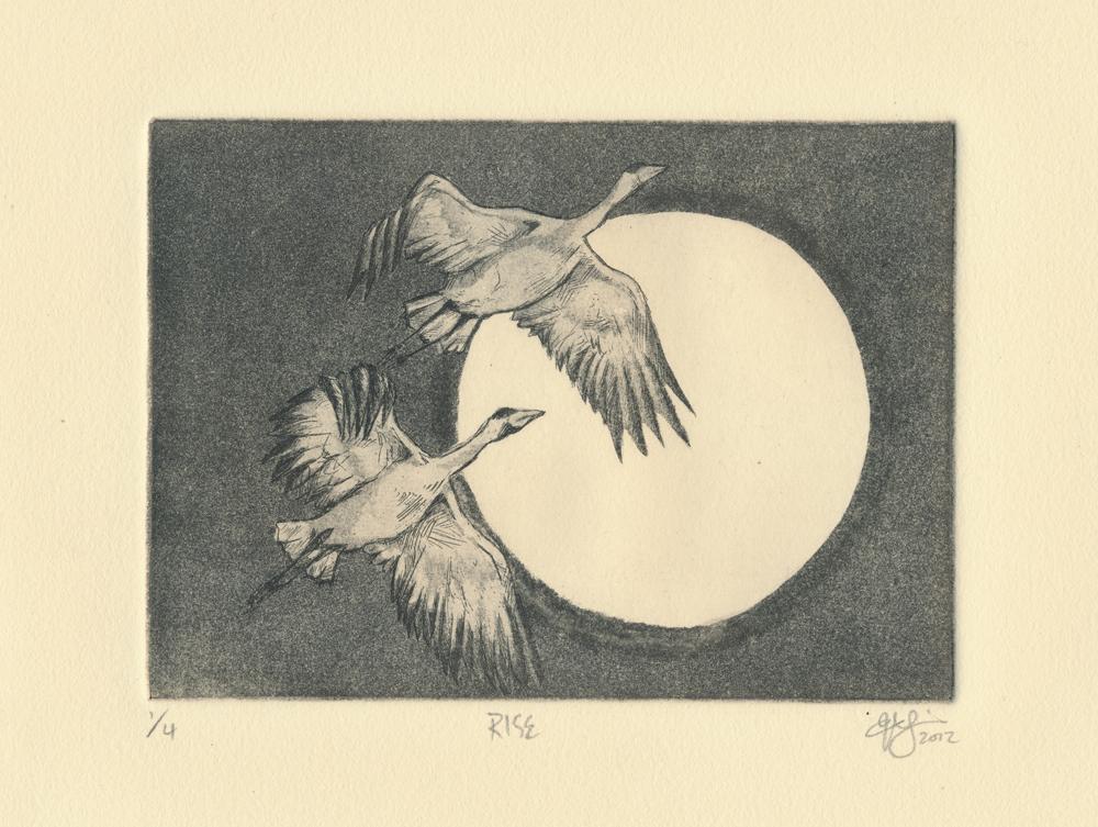 Rise. Aquatint, 2012.