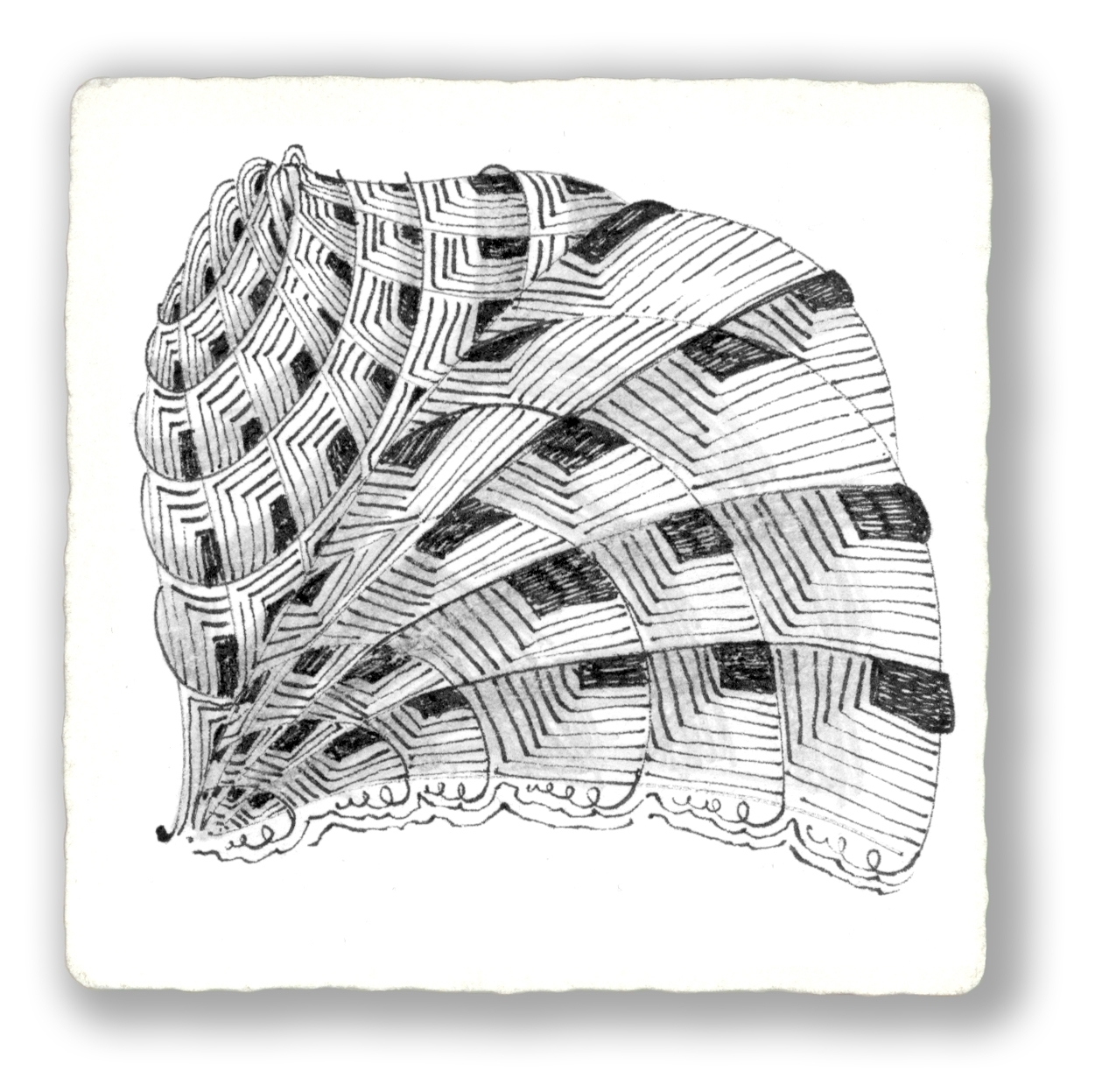 Zentangle image C 12 07.JPG