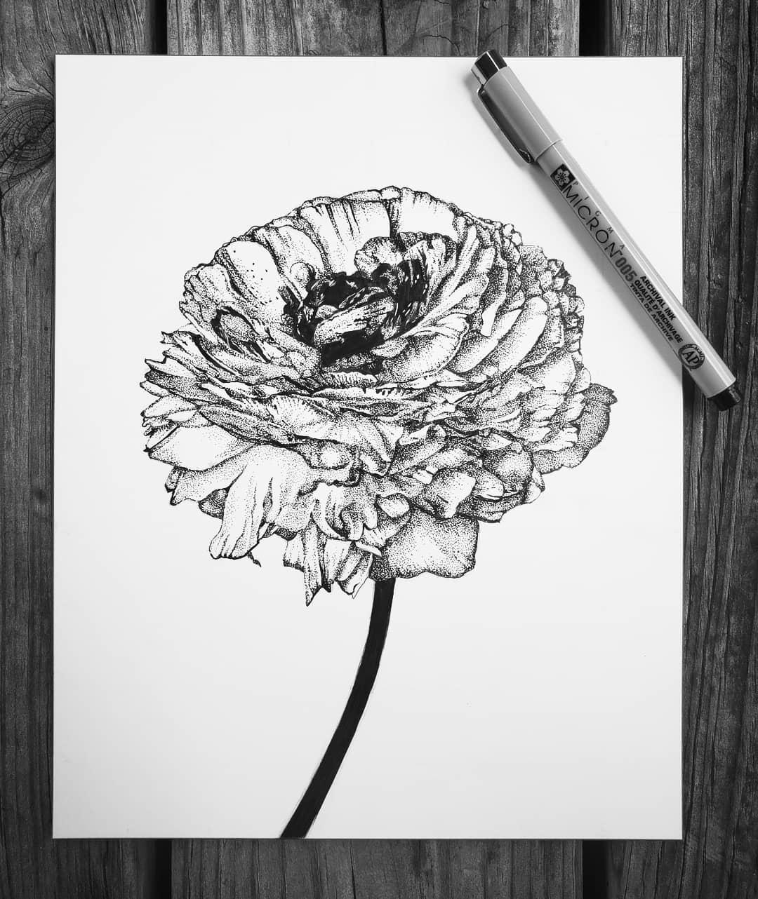 Shelby-Elizabeth-Flower.jpg