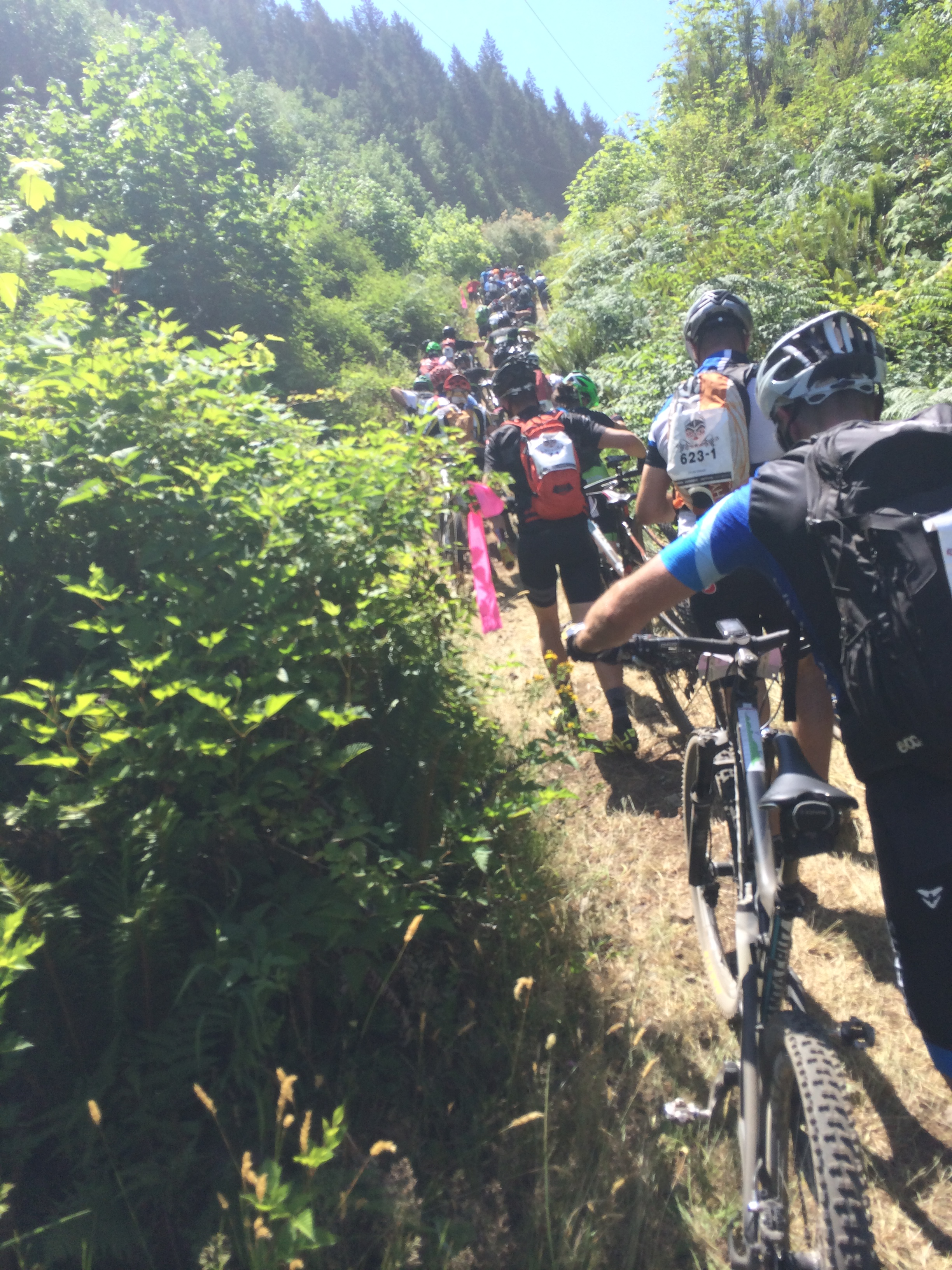 BC Bike Race hike-a-bike traffic jam in 100-degree heat.