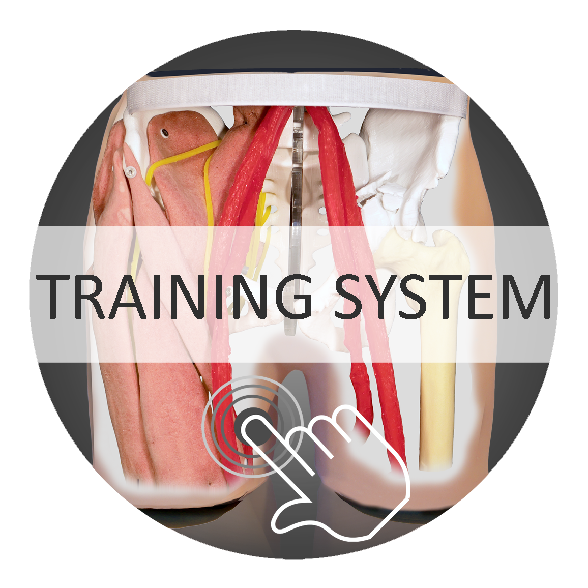 Training System HumanX Button