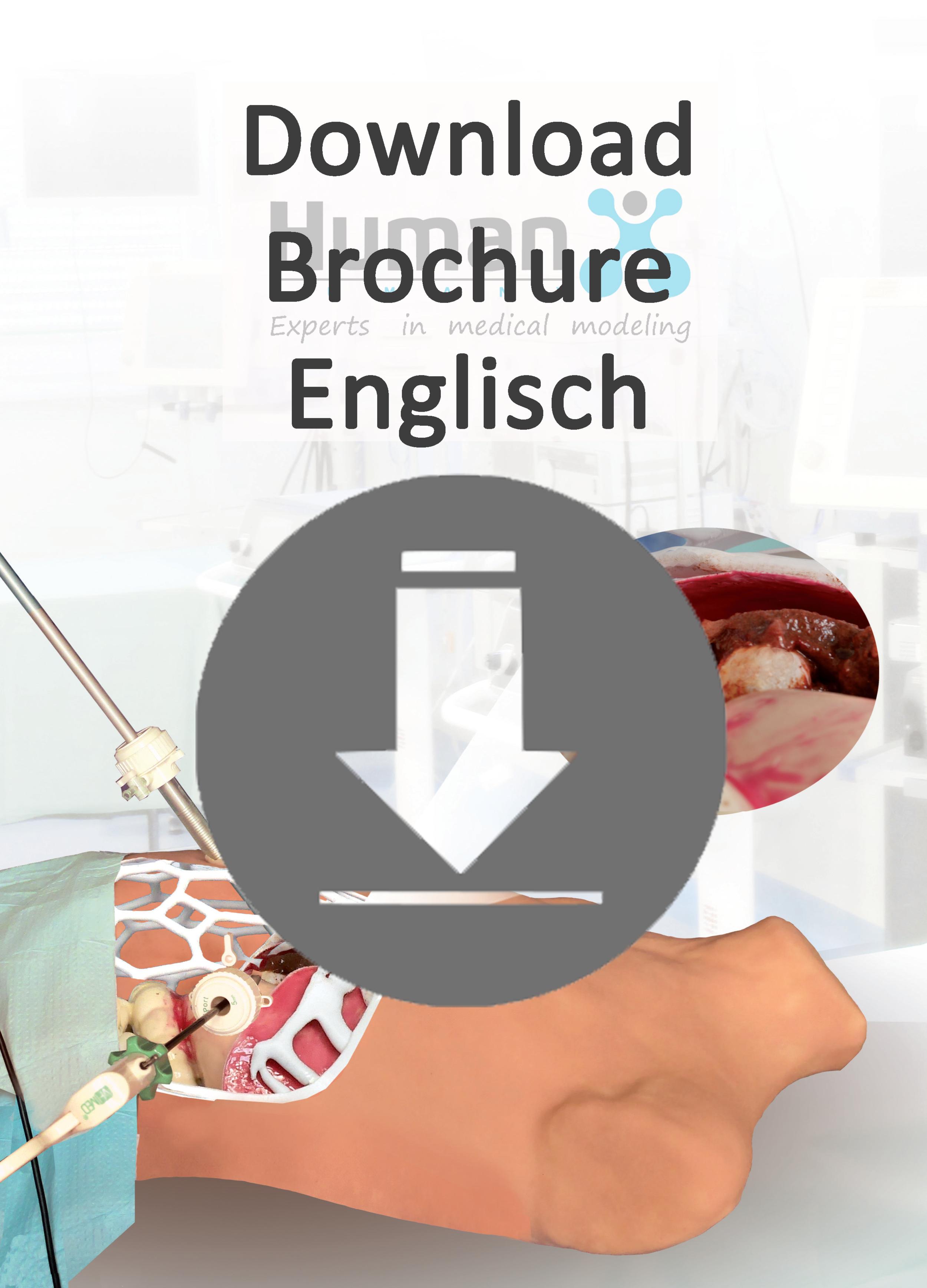 Download Brochure HumanX English (15 MB)