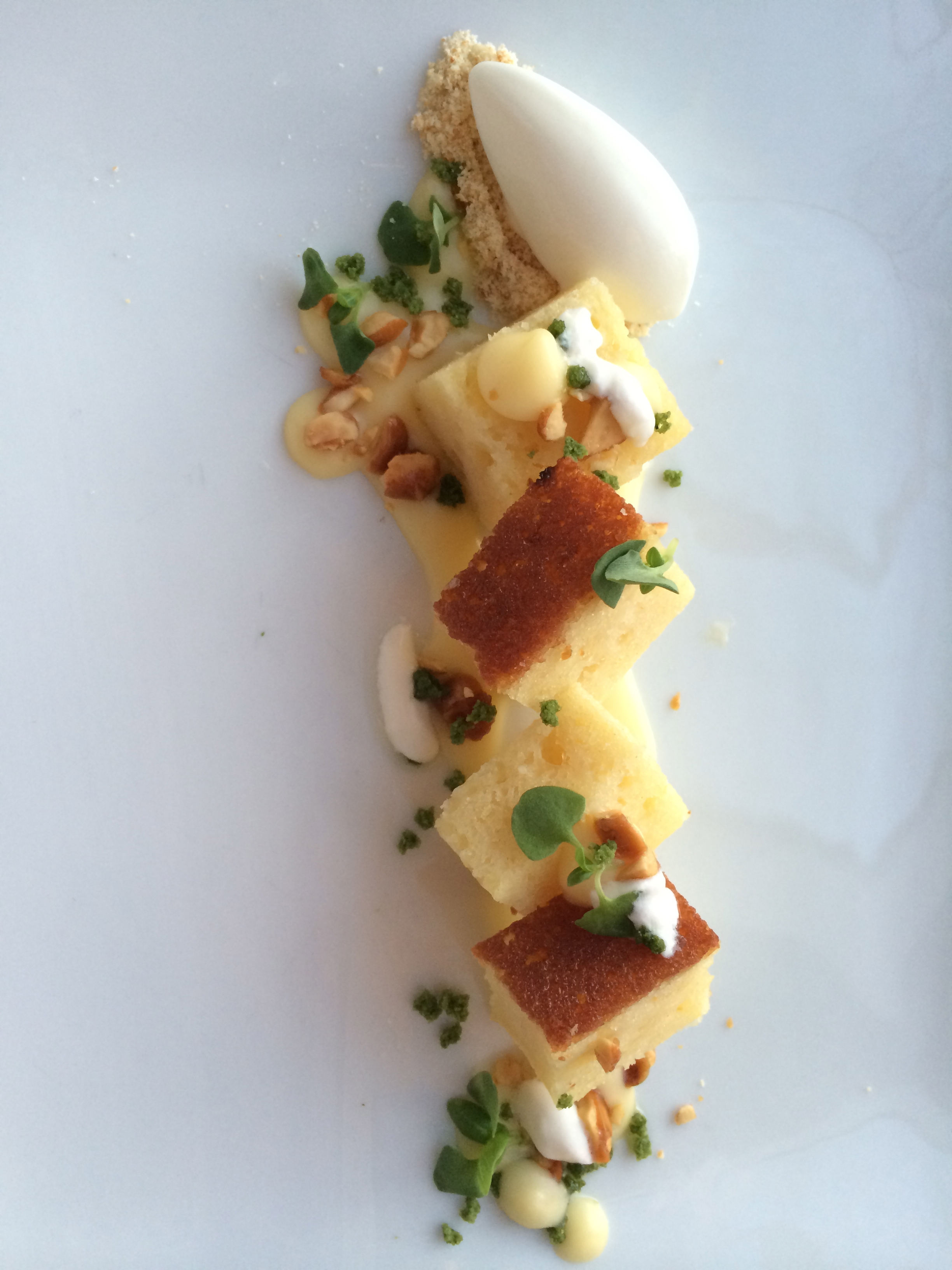 It all began with this. Lemon cake, grapefruit curd, fresh fromage, greek yogurt sorbet, and micro basil.