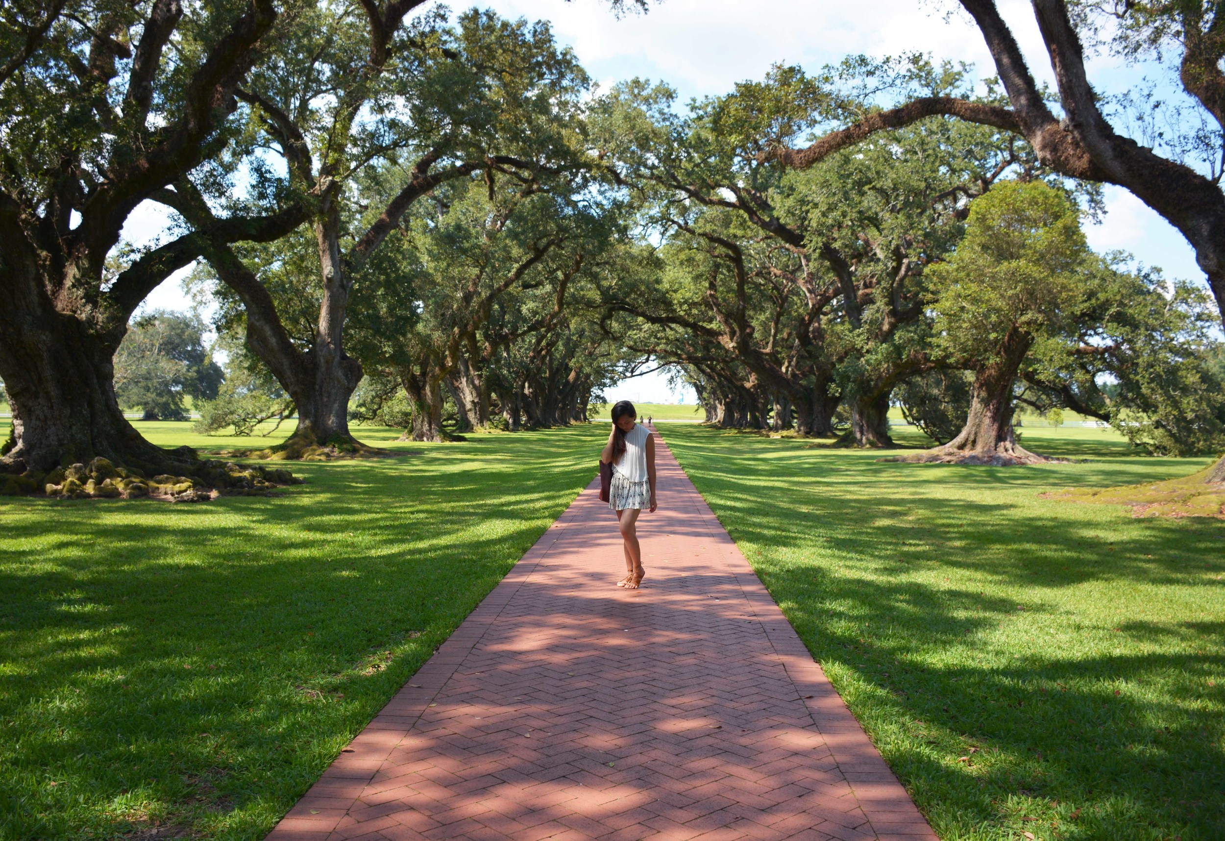 Twelve Oaks Plantation.