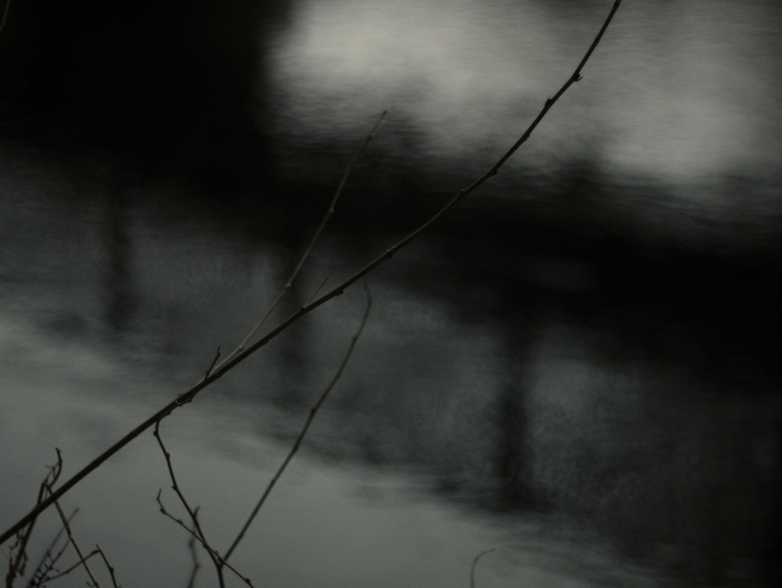 riverbranch_1.jpg